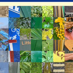 Colour walk picture collage